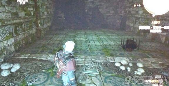 巫师3太阳石任务宝箱获得方法介绍 太阳石宝箱怎么拿