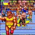 世界专业摔角2.0
