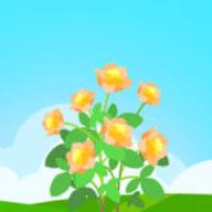 花开有宝1.2.9